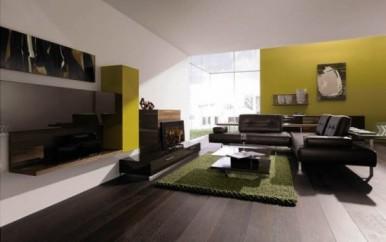 Green-Living-Room-Wall-System-Design-Ideas-From-Huelsta-550x345