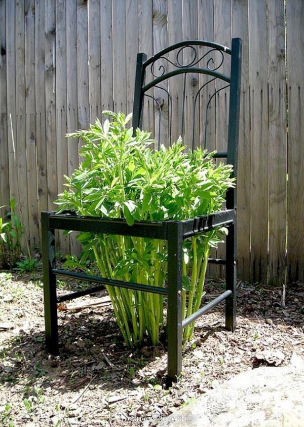 gammel-stol-i-haven-med-løvstikke-