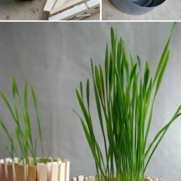 Genius-craft-ideas-DIY-Clothespin-flower-pot.