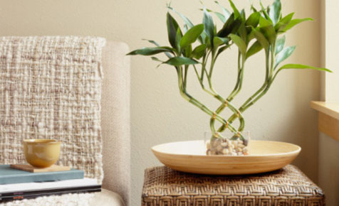 how-to-use-fengshui-for-your-home1.jpg