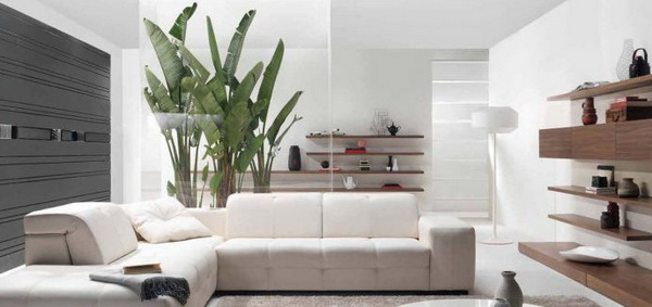 Living-Room-Decorating-with-Home-Plants